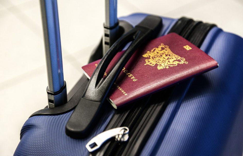 passport trolley bag
